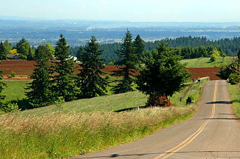 Parrett_Mountain_Road_(Yamhill_County,_Oregon_scenic_images)_(yamD0032)